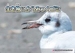 kamishibai4