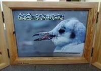 kamishibai_frame